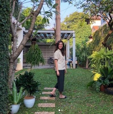 Gardening Hobby's Starter Pack a la Ersa Mayori