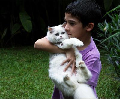 Bila Anak Pelihara Kucing